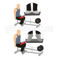 Подъем на носки в тренажере сидя (стопы разведены)