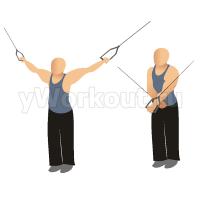 Сведение рук на блоке (положение стоя прямо)