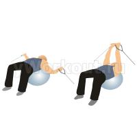 Сведение-разведение рук на блоке (лежа на фитболе)