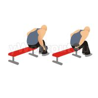 Попеременные разгибания гантелей на  трицепс в наклоне сидя