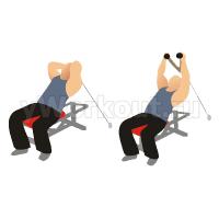 Разгибание на трицепс на блоке, на наклонной скамье (с канатной рукоятью)