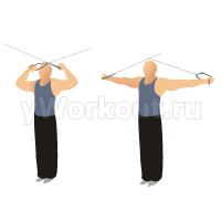 Разгибание на трицепс на блоке двумя руками стоя