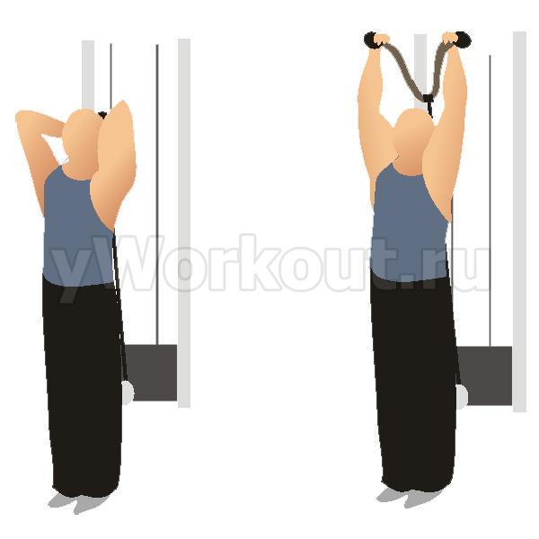 Разгибание над головой на нижнем блоке стоя (с канатной рукоятью)